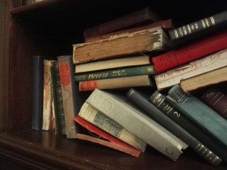 Breeze il libro sullo scaffale