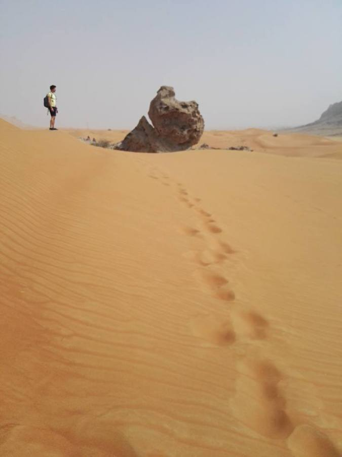 Diario di viaggio- EMIRATI ARABI- Abu Dabhi &Dubai