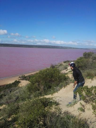 Il Pink lake