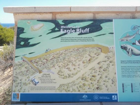 Piantina di Eagle Bluff
