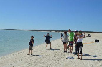 Shell Bay