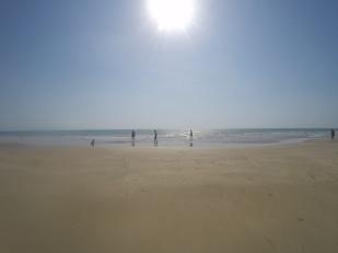 In spiaggia coi coccodrilli !?!?!